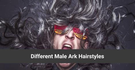 Male Ark Hairstyles